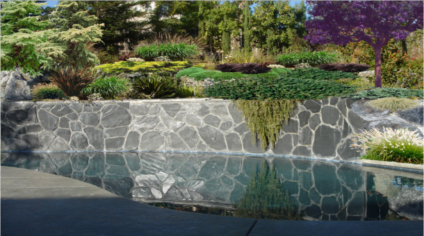Folsom Pool Contractor