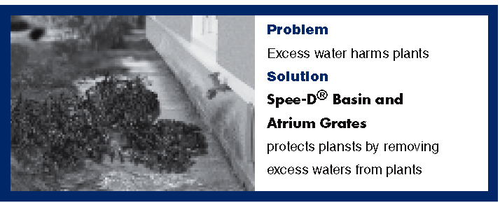 Surface & French Drainage Systems
